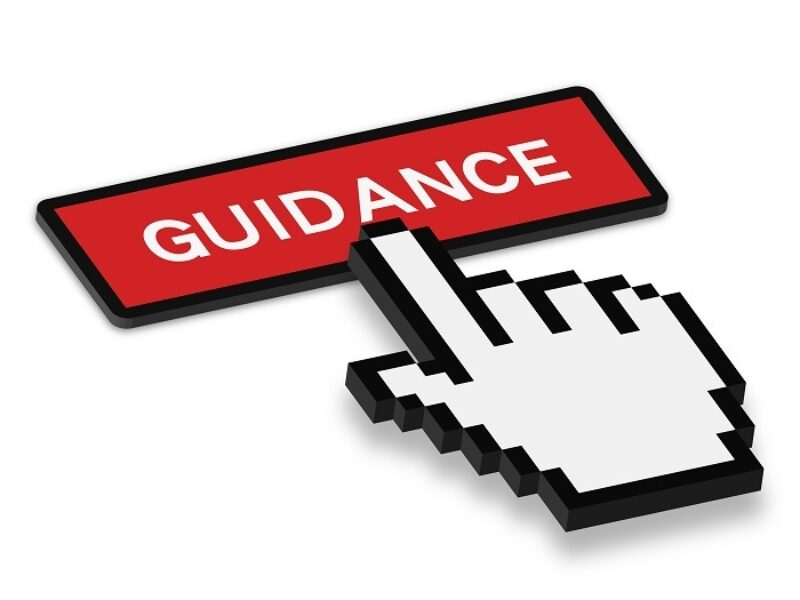 Mouse pointer icon hovering over 'Guidance' button